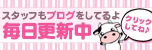 ミルクパイ スタッフブログ