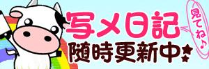 ミルクパイ 写メ日記